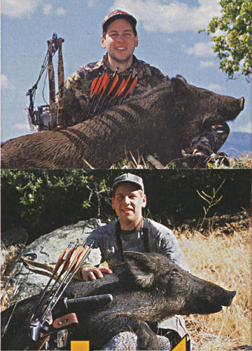 California_Wild_Hogs