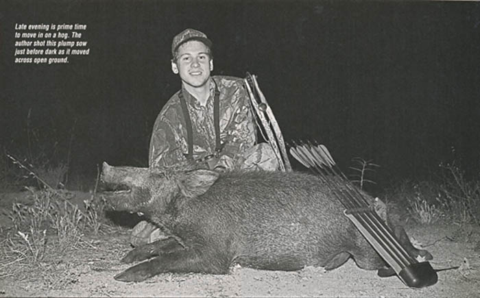 California_Wild_Hogs_7